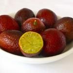 Bloody lime – a hybrid of Australian finger-lime and Canton red lemon