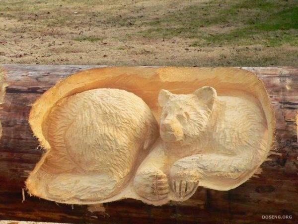 A bear. Realistic Wood Sculptures by Randall Boni