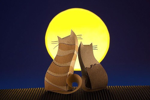 Two lovers cats under the moon