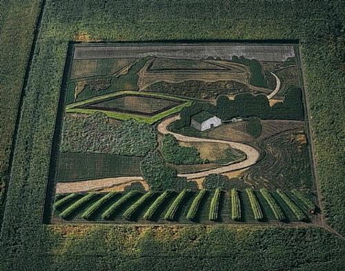 Representational crop art by Stan Herd