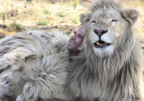 Kevin Richardson the lion whisper