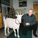 White goat and vladimir Putin