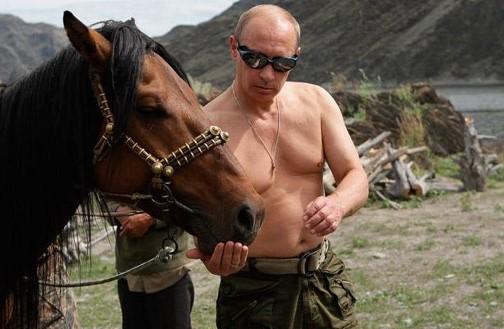Putin feeding a horse