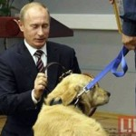 Life photo, Animal lover Putin