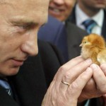 Iconic photo of putin and a chicken