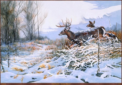 Chris Kuehn - Stormy Retreat. Animals in winter