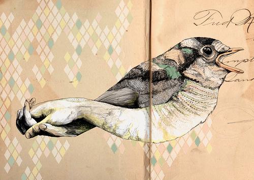 Bird and hand. Illustration by Israeli artist Gabriella Barouch