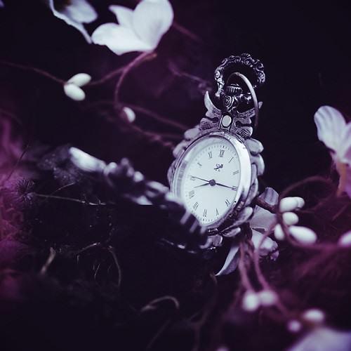 Elise Enchanted beautiful photo art