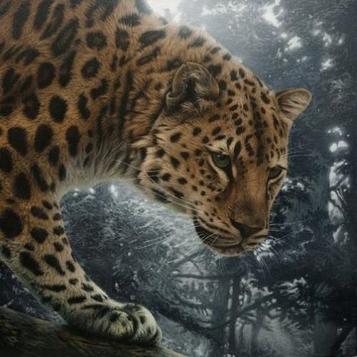 Realistic animal portraits by Romanian self-taught artist Cristina Penescu