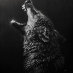Howling wolf. Realistic animal portraits by Romanian California based self-taught artist Cristina Penescu