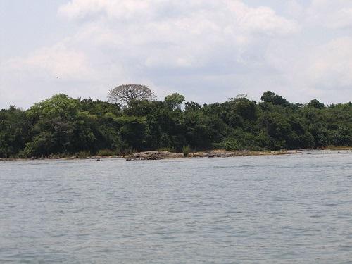 New 7 Wonders of Nature. The Amazon