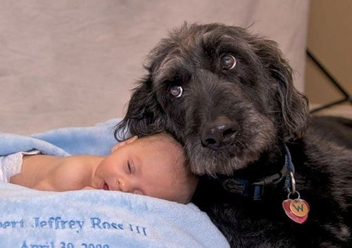 That best portion of a good man's life, His little, nameless, unremembered acts of kindness and of love. William Wordsworth