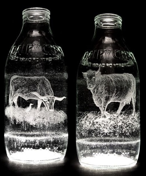 Beautiful Milk Bottle Engravings created by English artist Charlotte Hughes-Martin