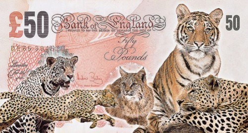 John Gray five endangered animals