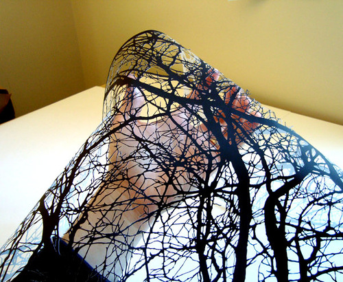 Papercuts by Joe Bagley