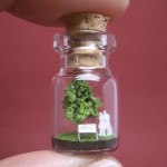 Tiny World in a Bottle by Akinobu Izumi