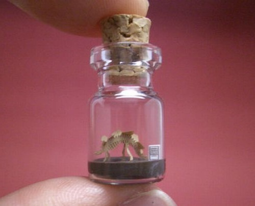 A miniature sculpture of a dog. Tiny World in a Bottle by Japanese artist Akinobu Izumi