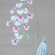 White orchids. 1913