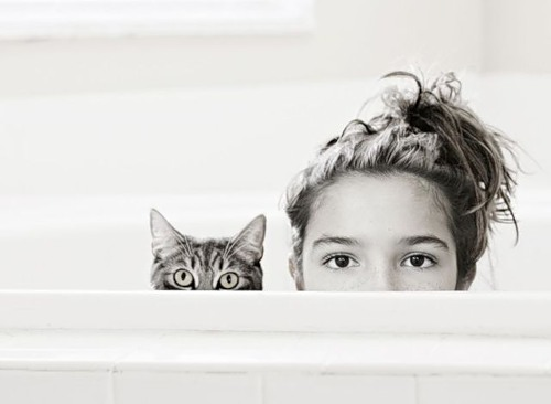 Ailurophiles – people who love cats. Facts about humans and cats