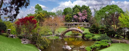 Huntington Botanical Gardens, San Marino, California, USA