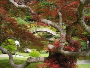 Huntington Botanical Gardens, San Marino, California, USA