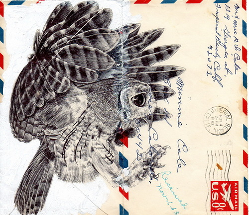 Drawings on envelopes by Mark Powell. Bic Biro pen drawings on vintage envelopes by British artist Mark Powell