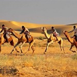 Races on camels