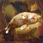 Danae the cat, on painting by Rembrandt