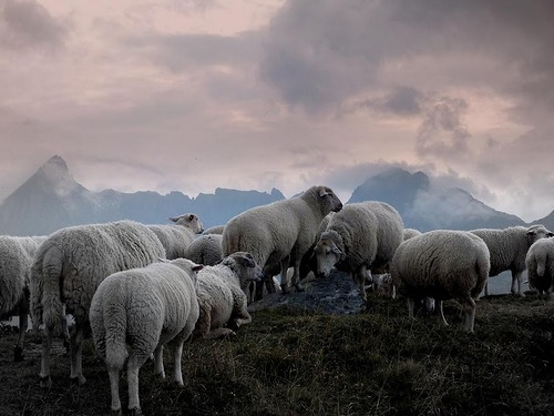 Landscapes by Swiss landscape photographer Gilles Ferrier