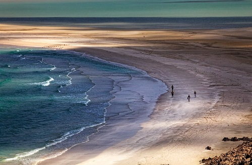 Beach of Socotra island