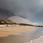 Sandy beach of the Socotra island