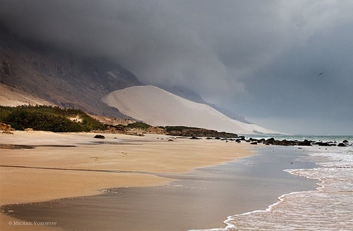 Sandy beach of the Socotra island