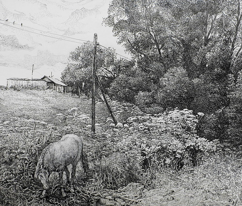 Pen ink drawings by Rustem Kuramshin