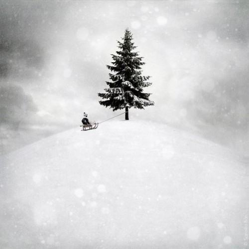 Lonely Christmas. Photoart by Hungarian self-taught photographer Sarolta Ban
