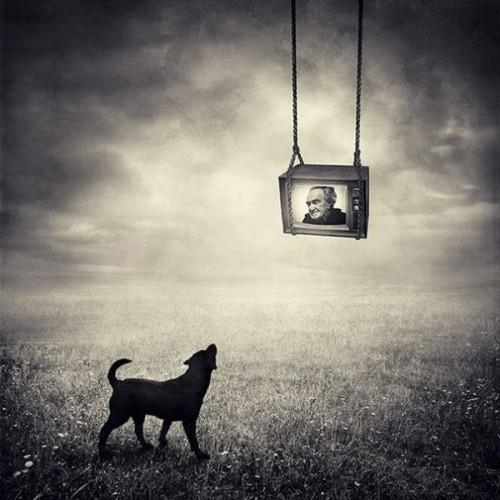 Creative photoart by Hungarian self-taught photographer Sarolta Ban