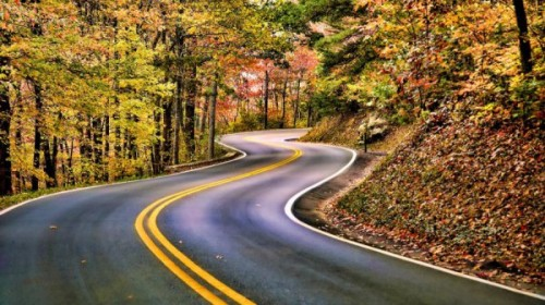There is a road from the eye to heart that does not go through the intellect. Gilbert K. Chesterton