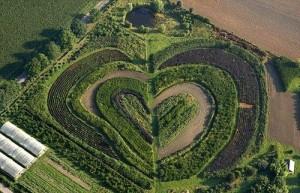A garden in the town of Waltrop, near Dortmund, Germany