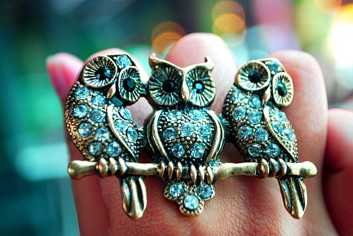Brooch - Owls