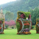 Topiary sculpture - Owls