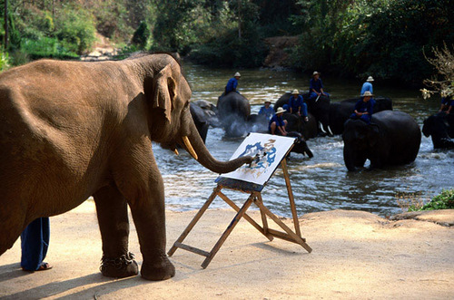 Asian elephant (Animal painters)