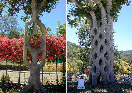 Erlandson's arborsculptural creations