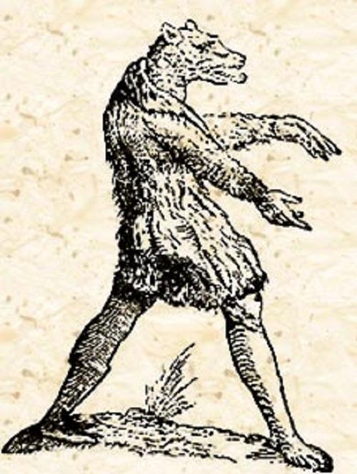 Cynocephaly dog-head humans. Cynocephaly Engraving by Ulisse Aldrovandi
