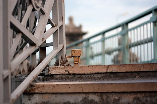 Cardboard man Danbo, photo by Anton Tang