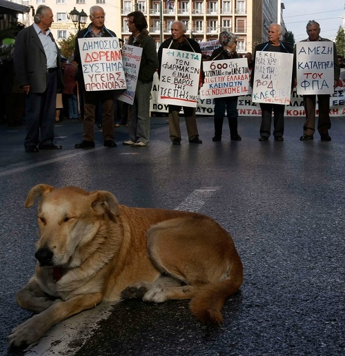 Athens Protest Dog Loukanikos - Person of the Year 2011