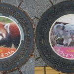 Kobe Manhole covers featuring wildlife animals