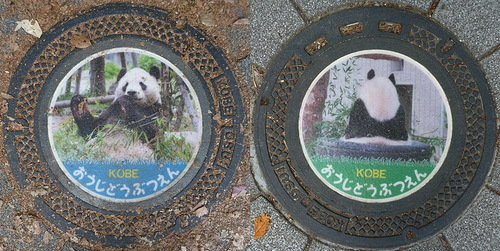 Koala – Manhole covers. Japanese photographer MRSY