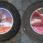 Series of beautiful Manhole covers featuring wild animals