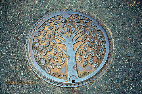 Tree of life. Japanese artful manhole covers symbolism