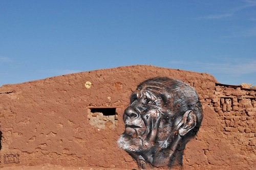 Message of peace and freedom in the Sahara desert by Street artist Mesa