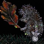 Beautiful Swarovski Crystal Pictures
